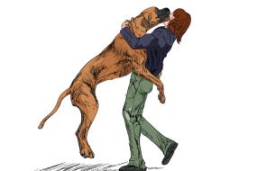dog-jumping-10